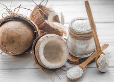 todavía vida con el coco y las escamas Fotos de archivo