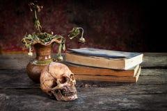 Todavía vida con el cráneo y el libro, florero Fotos de archivo