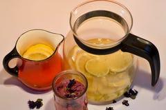 Todavía vida con el jarro, el pote y el vidrio con las hierbas y el té del limón Fotografía de archivo libre de regalías