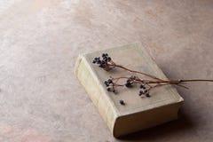 Todavía vida con el libro viejo y las ramas secas Foto de archivo