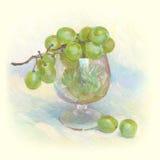 Todavía vida con el manojo de uvas Fotos de archivo libres de regalías