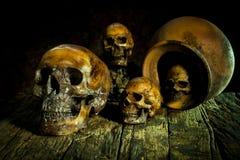 Todavía vida con el pote del cráneo y de arcilla, loza de barro Fotos de archivo