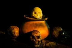 Todavía vida con el pote del cráneo y de arcilla, loza de barro Fotografía de archivo libre de regalías