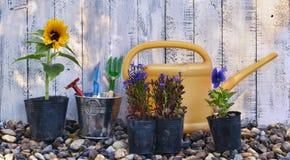 Todavía vida con el sombrero de las flores púrpuras de la petunia, de los guantes protectores, de la espada y de paja en el banco Foto de archivo