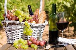 Todavía vida con el vidrio de las uvas de vino rojo y de la cesta de la comida campestre en TA Imagen de archivo