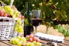 Todavía vida con el vidrio de las uvas de vino rojo y de la cesta de la comida campestre en TA Foto de archivo libre de regalías