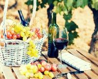 Todavía vida con el vidrio de las uvas de vino rojo y de la cesta de la comida campestre en TA Fotos de archivo