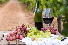 Todavía vida con el vidrio de vino rojo y de uvas Fotografía de archivo