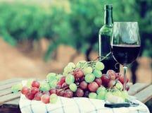 Todavía vida con el vidrio de vino rojo y de uvas Fotos de archivo