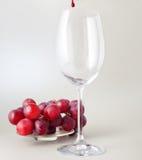 Todavía vida con el vidrio y las uvas Foto de archivo libre de regalías