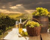 Todavía vida con el vino blanco Fotografía de archivo libre de regalías