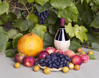 Todavía vida con el vino, las uvas y la fruta Imágenes de archivo libres de regalías