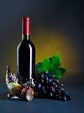 Todavía vida con el vino rojo Fotos de archivo libres de regalías