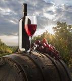 Todavía vida con el vino rojo Imagen de archivo