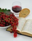 Todavía vida con el vino y la biblia Imagenes de archivo