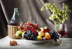 Todavía vida con el vino y las frutas Imágenes de archivo libres de regalías