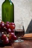 Todavía vida con el vino y las uvas Fotos de archivo libres de regalías
