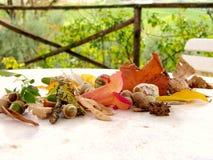 Todavía vida con la bellota y las hojas Imagen de archivo