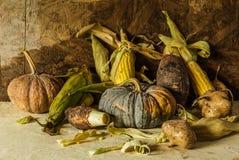 Todavía vida con la calabaza, maíz, taro, ñame. Fotos de archivo