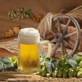 Todavía vida con la cerveza Imagen de archivo