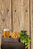 Todavía vida con la cerveza y los saltos Imagen de archivo libre de regalías