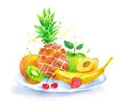 Todavía vida con la fruta en la placa libre illustration
