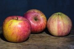 Todavía vida con la manzana, foto del arte Foto de archivo libre de regalías