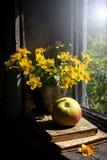 Todavía vida con la maravilla de la manzana y de pantano Foto de archivo
