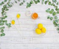 Todavía vida con la miel y los limones Fotografía de archivo libre de regalías