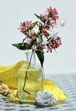 Todavía vida con la rama del flor Fotos de archivo