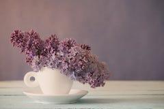 Todavía vida con la rama floreciente de la lila Imagenes de archivo