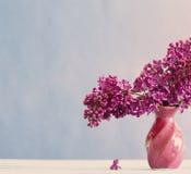 Todavía vida con la rama floreciente de la lila Imagen de archivo