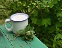 Todavía vida con la taza de manojo de la leche y del trébol Fotografía de archivo