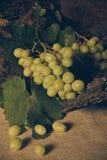 Todavía vida con la uva verde Fotografía de archivo