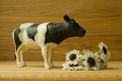 todavía vida con la vaca y las margaritas Fotos de archivo libres de regalías