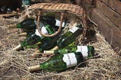 Todavía vida con las botellas de Antonio Barbadillo Foto de archivo libre de regalías