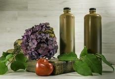 Todavía vida con las botellas de piedra Imagen de archivo