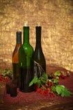 Todavía vida con las botellas de vino Imagen de archivo libre de regalías