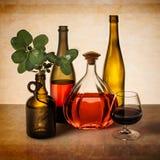 Todavía vida con las botellas de vino y el verdor Imágenes de archivo libres de regalías
