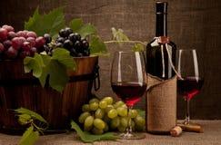 Todavía vida con las botellas, los vidrios y las uvas de vino Foto de archivo libre de regalías