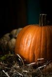 Todavía vida con las calabazas en un heno con las hojas de otoño Foto de archivo libre de regalías