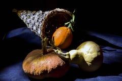 Todavía vida con las calabazas y la naranja Imagen de archivo libre de regalías