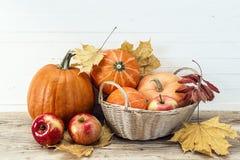 Todavía vida con las calabazas y las manzanas en la cesta y el pasto del otoño Fotografía de archivo