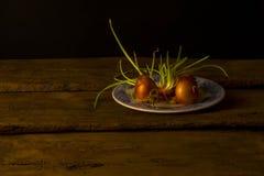 Todavía vida con las cebollas que dan lanzamientos Fotografía de archivo