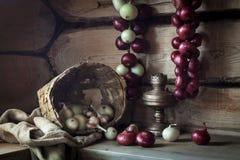 Todavía vida con las cebollas y la lámpara vieja Fotografía de archivo libre de regalías
