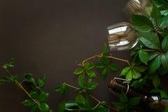 Todavía vida con las copas, las botellas, las uvas y las hojas Fotografía de archivo libre de regalías