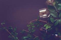 Todavía vida con las copas, las botellas, las uvas y las hojas Fotos de archivo libres de regalías