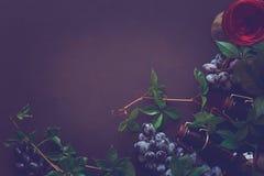 Todavía vida con las copas, las botellas, las uvas y las hojas Imagen de archivo libre de regalías