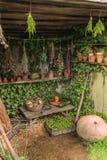 Todavía vida con las diversas verduras al aire libre en el sol Imagen de archivo