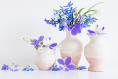 Todavía vida con las flores Fotos de archivo libres de regalías